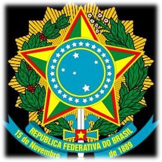 081214 1757 2 Особенности конституционного управления Республики Бразилии