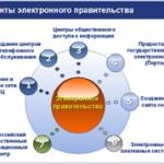 Электронное правительство и цифровая демократия