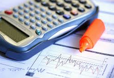 082814 0122 1 Аудиторская деятельность и финансовый контроль. Общественный финансовый контроль