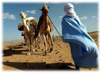 080914 1346 1 Активизация протестного движения на Арабском Востоке