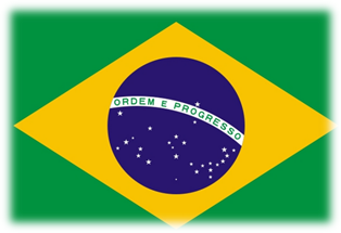 081214 1757 1 Особенности конституционного управления Республики Бразилии